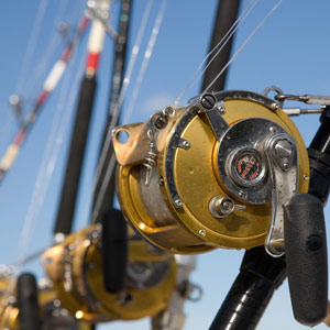 fishing_rods_reels
